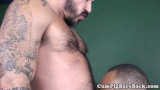 Black bear assfucking muscular wolf a bareback athletic