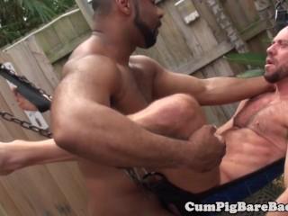 Black bear doggystyle fucking a stud