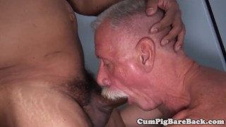 Dicksucking polar bear rides chubs cock  hairy bear cowboy blowjob assfucking bedroom missionary chub gay closeup mature socks deepthroat unsaddled cumpigbareback barebackcumpigs