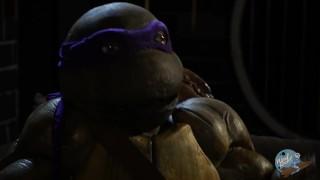 Teenage Mutant Ninja Turtles Porn Parody Tracer warcraft