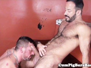 Doggystyled bear drilled by wolfs dong