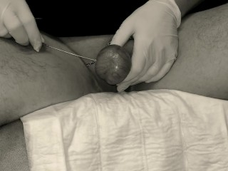 pierced testicles
