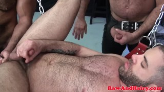 Toyed bear trio bareback ass threeway after toy tattoo