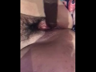 Hairy bush squirt