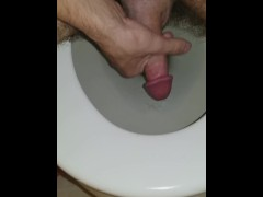 Quickie in the toilet