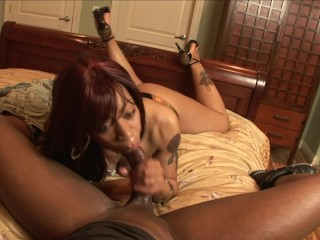Big Ass Ebony Whore Da Amazong Big Black Cock Blowjob And Face Full Of Cum