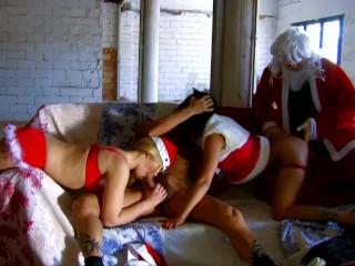 Shark hardcore porn