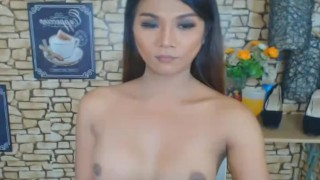 Wild Asian Shemale Jerks on her Big Hard Dick porno
