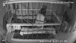 The Cage Cam May 6 2018 1419