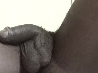 BBC erection time lapse