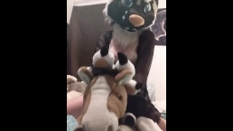 Plushie Play with my Horse and Leopard