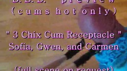 BBB preview: 3 chix cum receptacle (cumshot only)