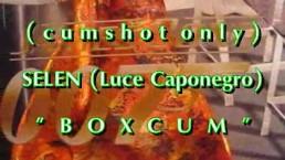 B.B.B.preview: SELEN's BoxCum (cumshot only)