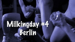 Milking Day #4 - Berlin