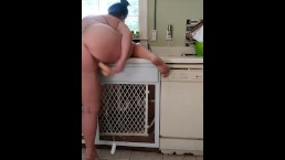 PAWG DILDO FUCKING ON KITCHEN COUNTER