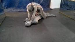 crocodile zentai struggles against snake zentai