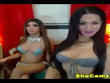Two Shemale Hottie is Horny and Playful live on cam