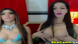 On live hottie shemale two playful cam is horny and ts dick