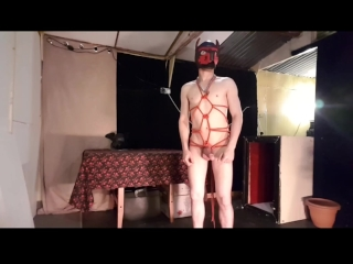 Pup gets tied up and fucked hard
