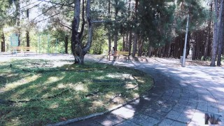 Public sex in a parc,she loves deepthroat and anal sex. Inside tits