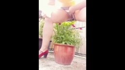 NAUGHTY GIRL WATERS ROSES WITH PISS AND QUIETLY FUCKS HERSELF ON PATIO