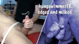 hungswimmerFR edged and milked