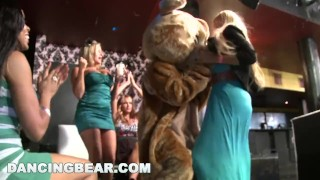 DANCING BEAR - Let Me Tell You About A Crazy Party Full Of Chicks Suckin' D Pussy solo