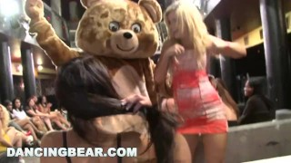 Chicks bear of crazy full tell about let me you dancing suckin' a d party ggw girlsgonewild