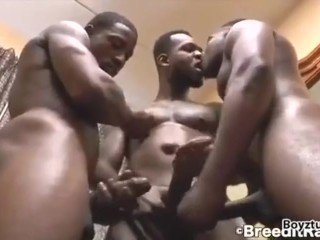 Black Sexy Threeway