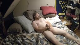 harige beer masturbeert op film