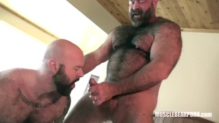Hungry pigs cum cock rimming musclebearporn