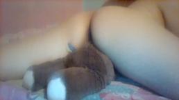 Humping my teddy bear