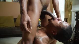Xxx Sex - Raw Breeders - Men Breed That Ass And Make It Milk