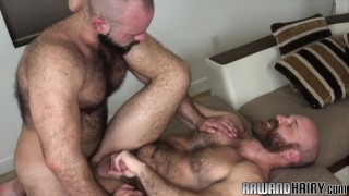 Hairy stud jizzcovered after bareback analsex
