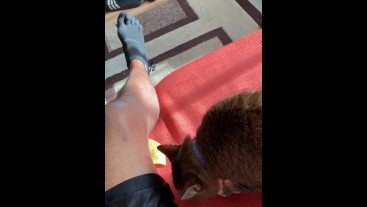 Cat licking chip by my leg