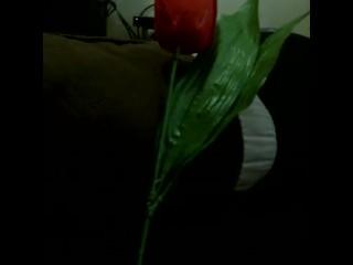 Be my secret Valentine