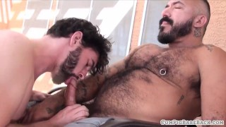Mature hairy bear breeding young otter