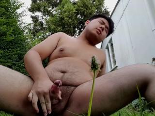 Morning cum in the garden