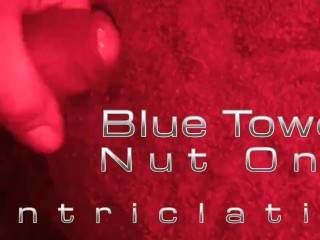 Blue Towel Nut One