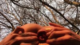 Outdoor teen anal gape - rosebud - wrecked hole