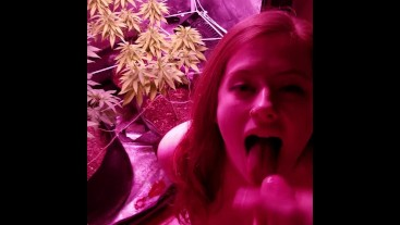 KINKY 420 BABE LOVES WEED AND SUCKS DICK IN THE GROW ROOM