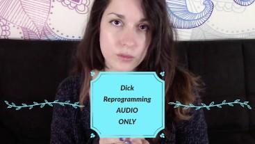 Dick Reprogramming MP3