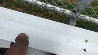 Pissing off school bleachers 365movies