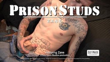 Prison Studs: Zane