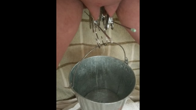 Stretched labia porn Bdsm pussy labia stretching weight torture pissing in a bucket clamped lips