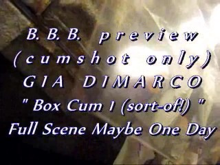 B.b.b. preview: boxcum1(sort of ) wmv with slomo
