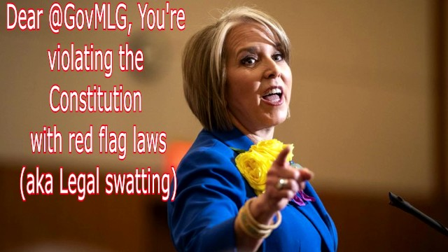 Rifle at bottom of flag Dear govmlg, youre violating the constitution with red flag laws