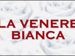 La Venere Biana...