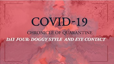 COVID-19: Chronicle of quarantine | Day 4 - Doggy style and eye contact