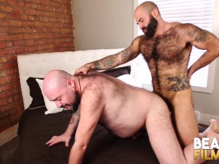 Hot Hairy Bears Bareback
